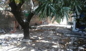 quintal do
